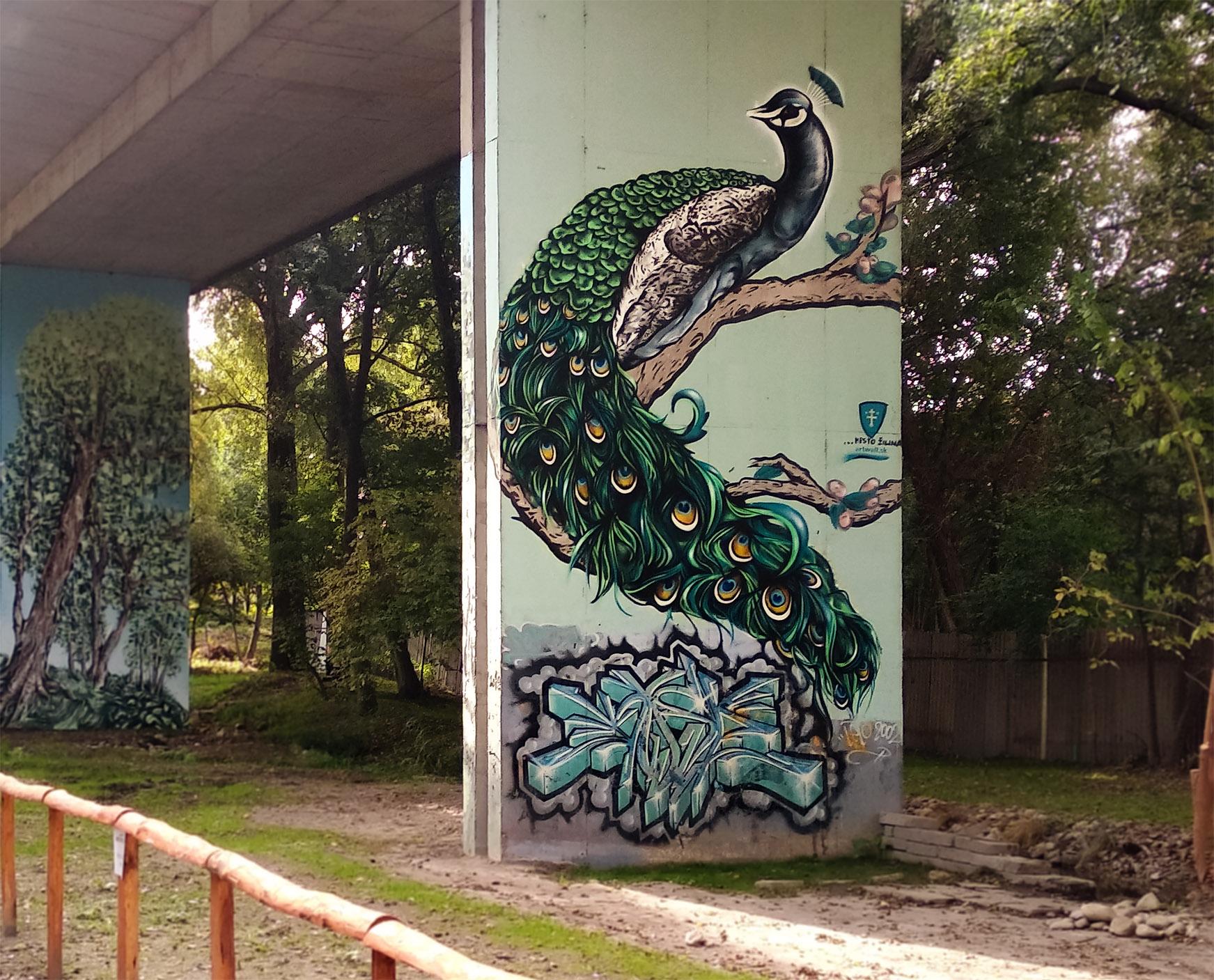 Peacock_street art